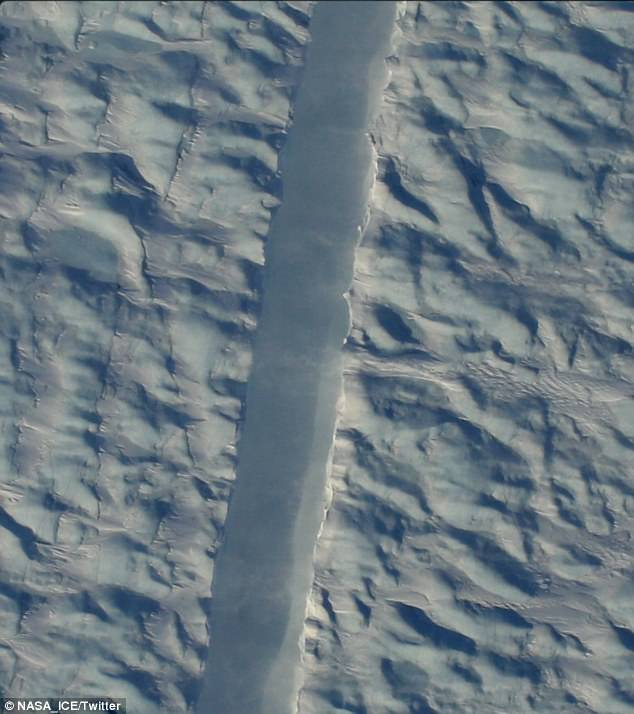 NASA field campaign Operation IceBridge has captured the first photographs of the growing crack.Researchers are keeping a close eye on it they believe it holds back a foot of potential sea level rise from the Greenland ice sheet