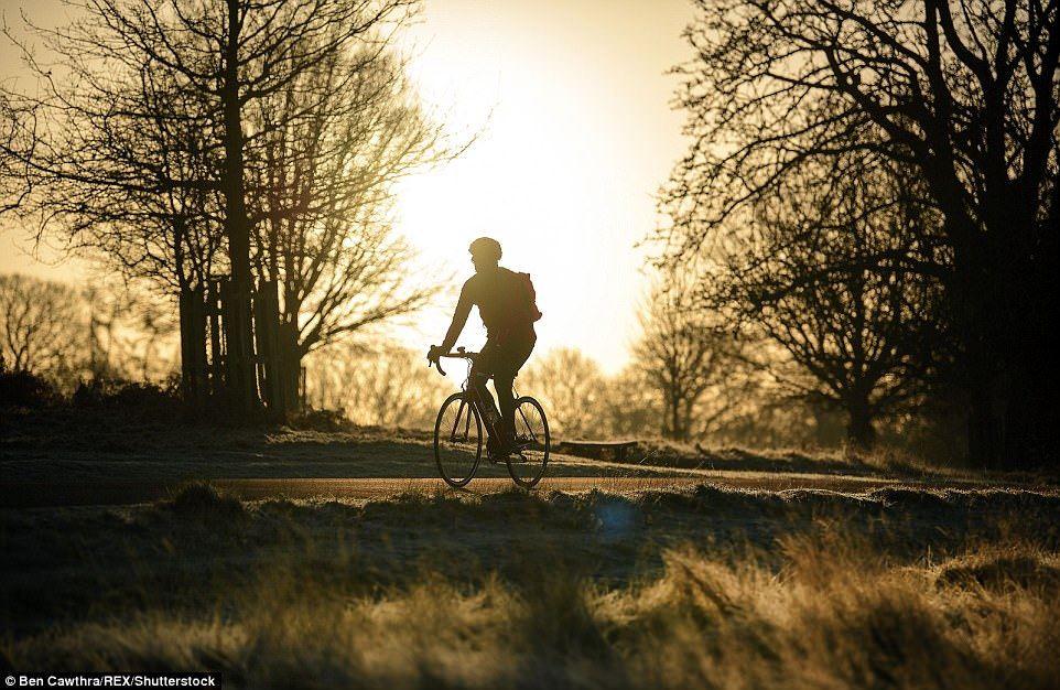 Sunrise in London: A plucky cyclist makes his way through frozen landscape at sunrise in Richmond Park, west London