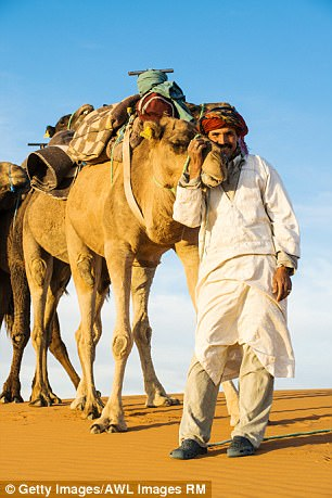 Desert: A camel-driver in traditional dress