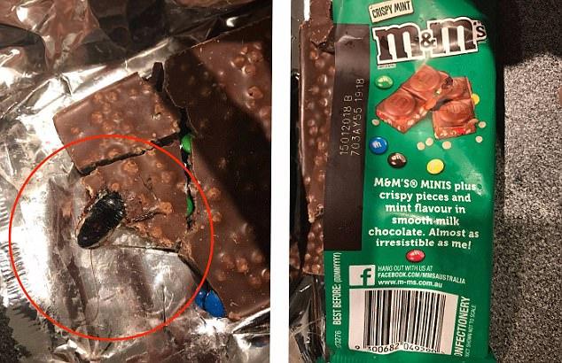 Man Finds Dead Cockroach Inside His MampMs Chocolate Bar