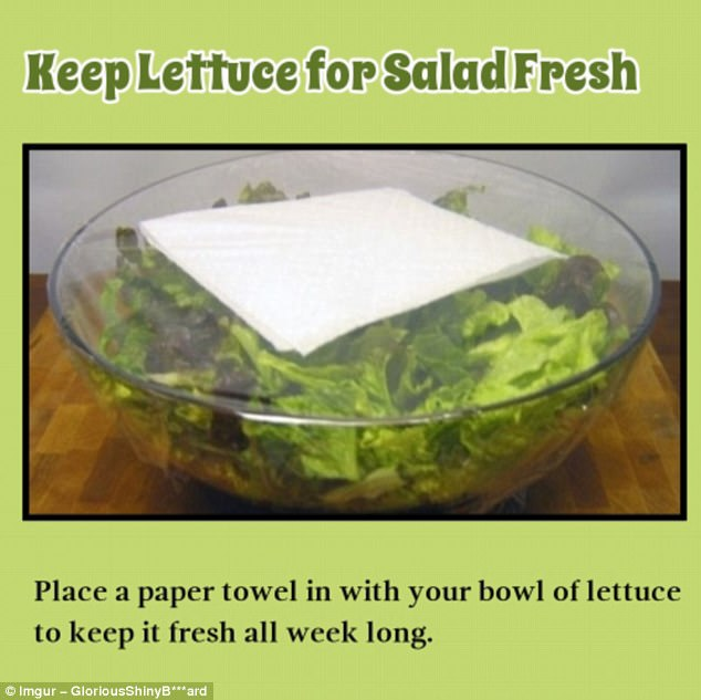 Crisp: This will prevent moisture from settling on the leaves while your salad sits in the fridge