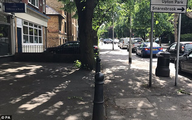 The 30-year-old nursery worker was attacked from behind and then stabbed in the arm as her assailants chanted 'Allah' in the quiet, leafy street (pictured)