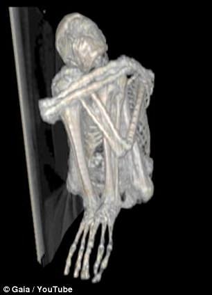 Mas os três longos dedos da múmia em cada mão e sua falta de nariz e orelhas sugerem que pode ser algo além da Terra.