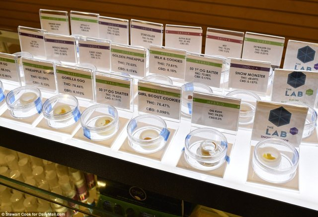 Different strains of marijuana are seen on display at Euphoria Wellness, including Golden Pineapple, OG Kush, and Girl Scout Cookies