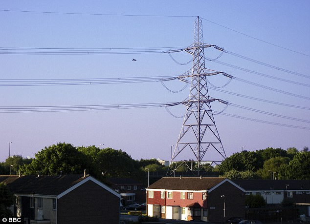 Russian hackers are thought to have attacked the UK's national grid sparking fears that electricity supplies could be cut by cyber terrorists (stock photo)