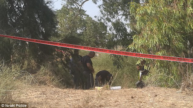 The body of Michal Halimi was found in Holon, Israel, after Muhammad Harouf reportedly confessed to strangling her and bludgeoning her with rocks. Police are pictured at the scene