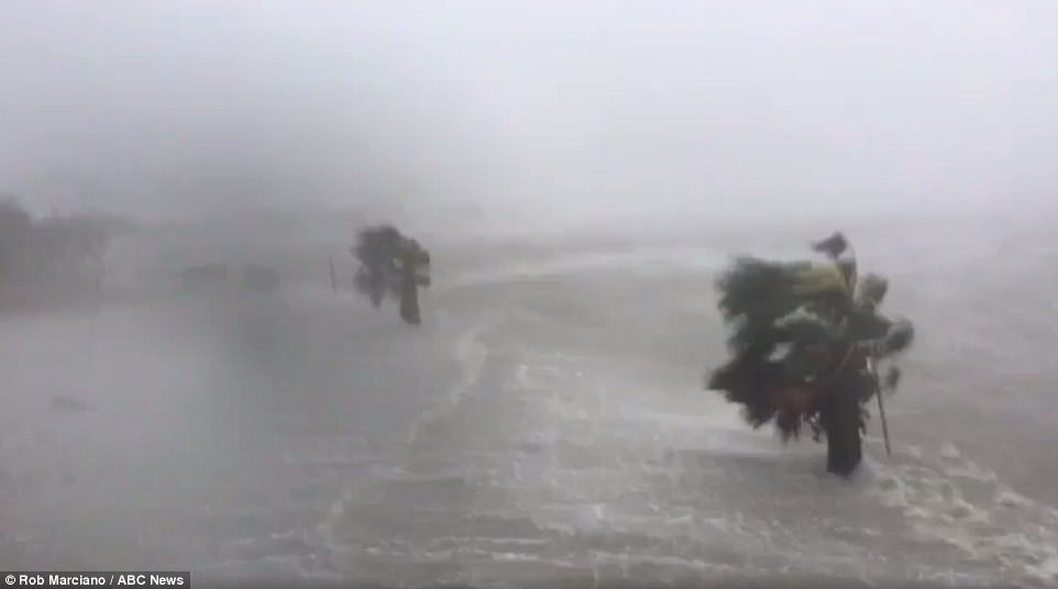 Flash flood warnings continue to be in effect as Hurricane Harvey pounds Port Lavaca, Texas, one of the city's under mandatory evacuations