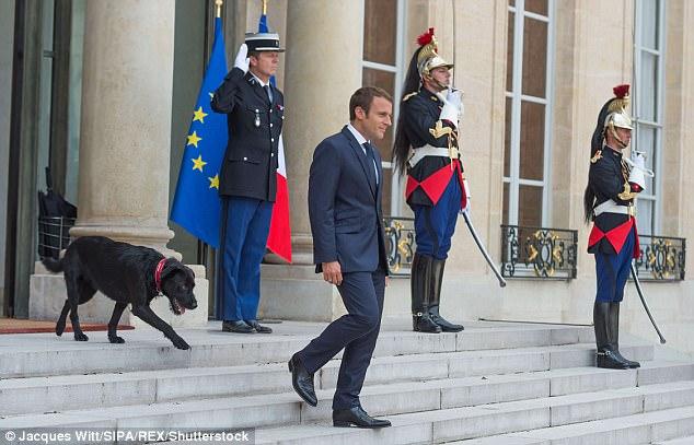 El Sr. Macron quiere tratar con las solicitudes de asilo antes de que la gente suba a los botes mortales pequeños & nbsp;