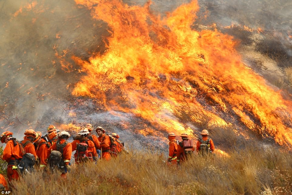 A crew with California Department of Forestry and Fire Protection battles La Tuna on a hillside in Burbank