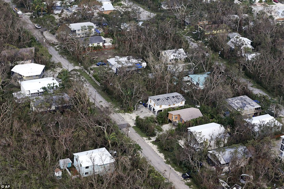 The heavy winds left many of the trees in Key Largo, Florida barren after the storm
