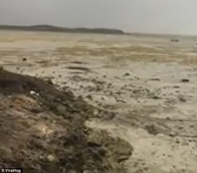 The beach in the Bahamas was left in this state after Hurricane Irma sucked up water