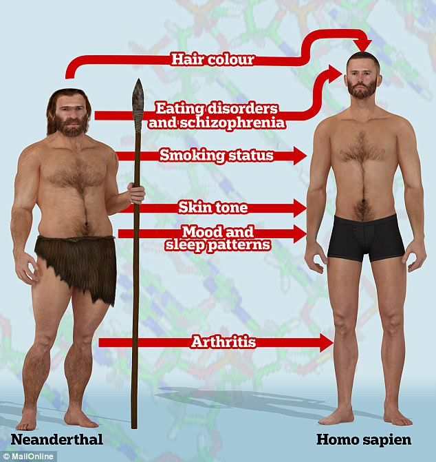 Researchers found Neanderthal genes play roles in our susceptibility to eating disorders, schizophrenia and arthritis. The study follows separate research published yesterday which found that Neanderthal DNA can drive our smoking habits, mood swings, and skin tone