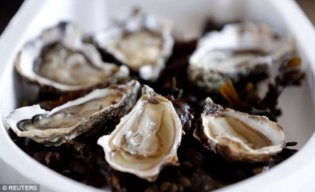 The authors say plans to farm oysters, mussels and clams should take the research into account.