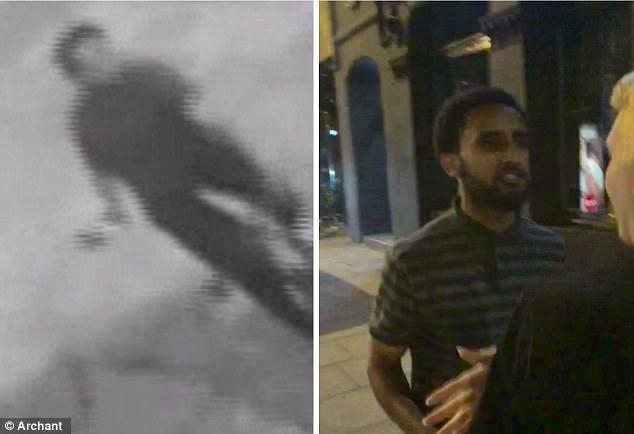 Police hunting the crazed brute - thought to be high on drugs or drunk - put out blurred and grainy CCTV images of him that 'could have been anybody'. Right: The images that Ms Birgitta released