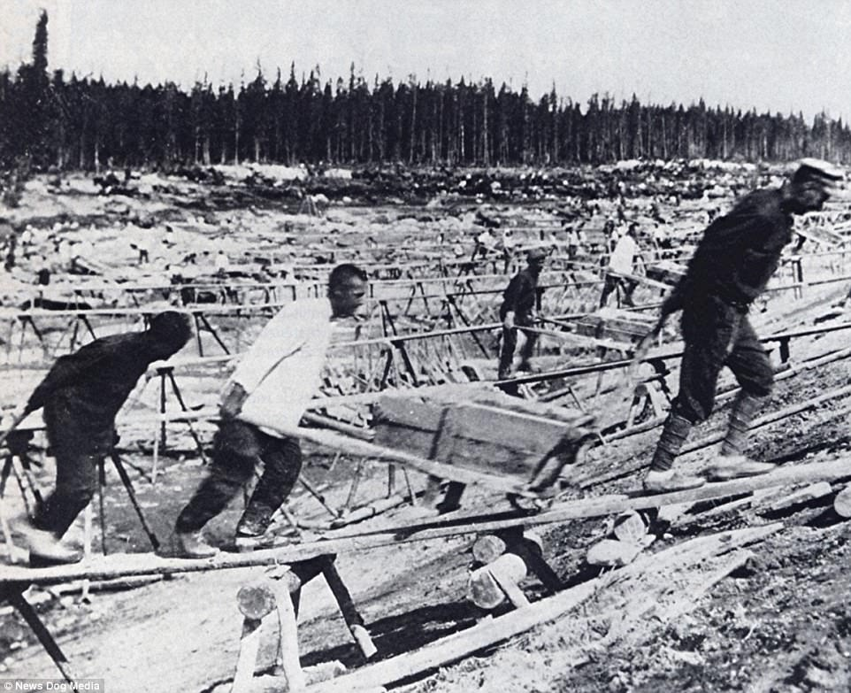 These pictures serve as a harrowing reminder of the true horror of the Soviet-era gulag prisons run by Joseph Stalin betwen 1929 and 1953. A 1932 photograph (pictured above) show prisoners at work building the White Sea-Baltic Canal - a project which was entirely made through slave labour and where 12,000 people died while working amid the harsh conditions