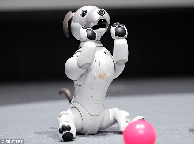 The new version of the 30-centimetre (one foot) hound will launch in Japan in January but will not come cheap, priced at around £1,300 ($1,750)