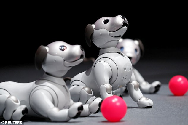 Aibo is billed as a pet that behaves like a puppy using artificial intelligence (AI) to learn and interact with its owner and surroundings