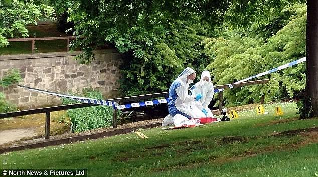 Abdel-Aziz Al-Shamary raped a womanby the River Skerne after she left a pub in Darlington