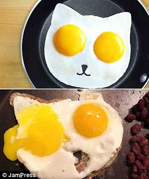 What an egg-traordinary disaster! One cook tried to make a cute cat-shaped fried egg but one of her yolks split