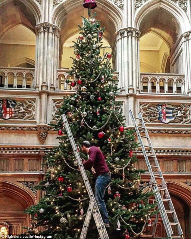 Trimming the tree: Workmen need ladders to hang the ornaments on this beautiful tree