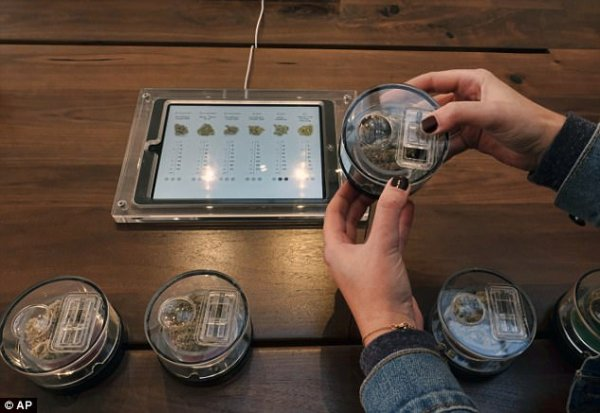 By 2019, that number is expected to jump by more than one billion. More than six dozen marijuana retailers have been licensed to start selling recreational pot in California on New Year's Day (Pictured, sample containers of marijuana are on display at MedMen, a medical marijuana dispensary in Los Angeles, December 21)