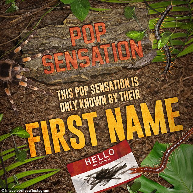 Latest clue: Taking to Instagram, I'm A Celebrity offered their latest clue with the text: 'Pop sensation...this pop sensation is only known by their first name'