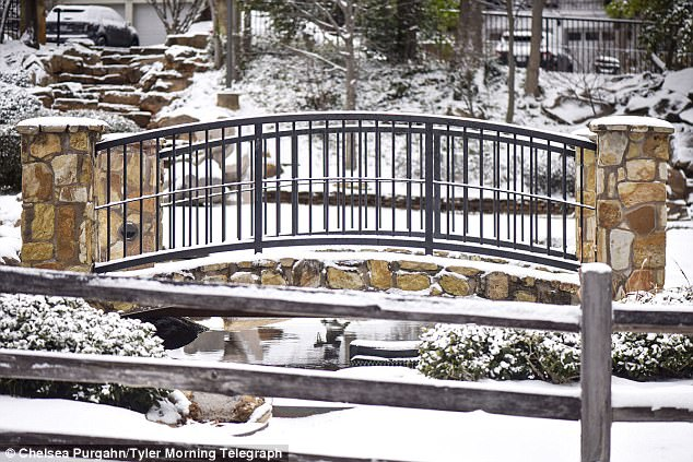 At 8am, there was a 50 degree temperature between Brownsville in the south at 53F and Amarillo far north at 3F (Pictured, snow blankets a park in Tyler early Tuesday morning)