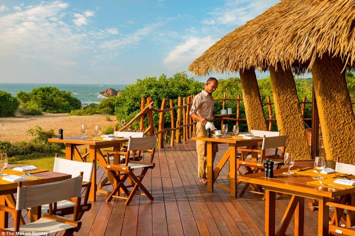 Luxurious: Sri Lanka's Yala National Park has one of the highest leopard densities in the world. Pictured: Chena Huts, which borders the park itself