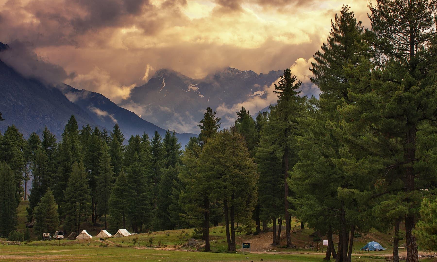 Rama Meadows. — Syed Mehdi Bukhari