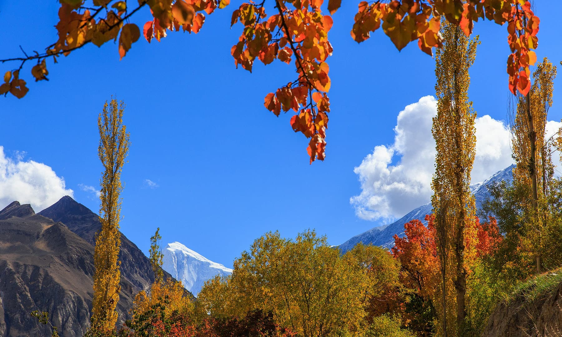 View of Golden Peak.