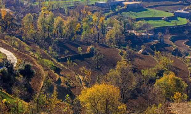 مٹہ کا ایک گاؤں. — فوٹو سید مہدی بخاری۔