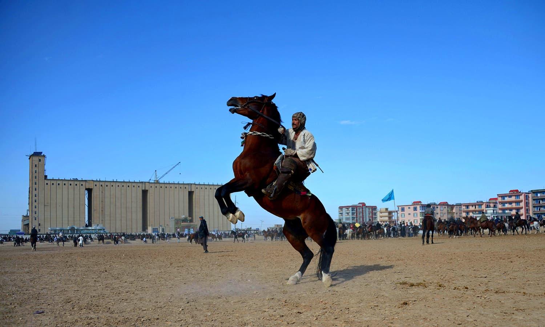 A horseman controls his horse. ─ AFP