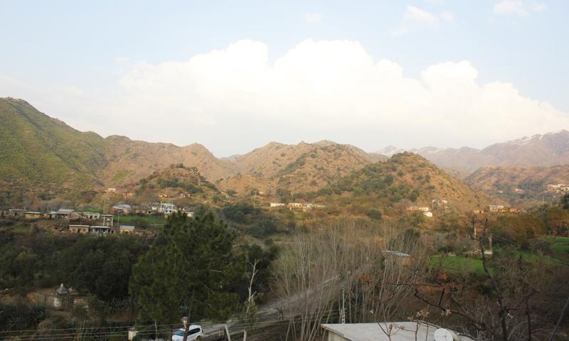 Plantation has taken place on the barren slopes of Karwala village in Haripur. -Image by Asim Ali