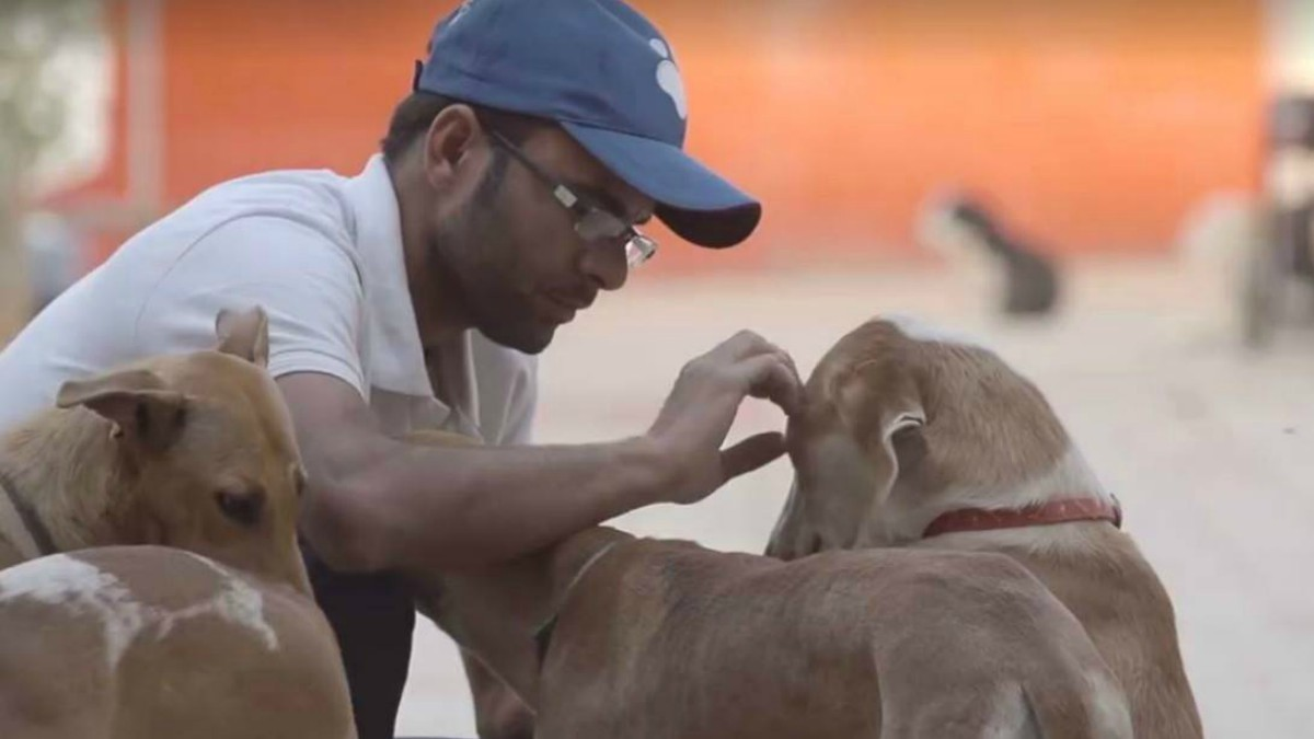 This feel-good video from a Pakistani animal shelter will warm your heart