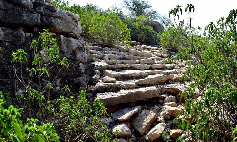 The long unused steps.