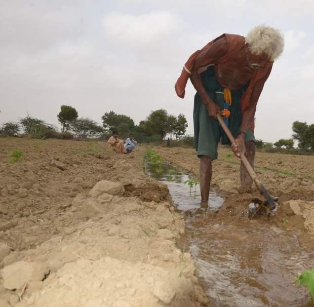 ایک کسان اپنی زمین پر کام کرتے ہوئے نظر آرہا ہے—فوٹو: وائٹ اسٹار