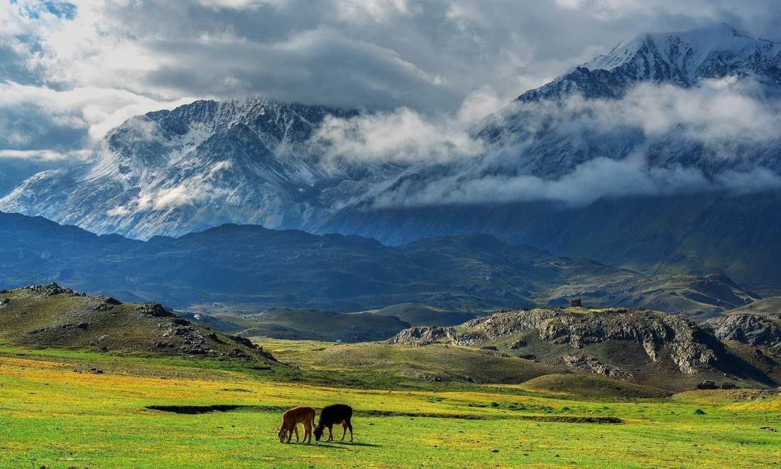 Meadows of Broghil Valley. — *Photo by author*