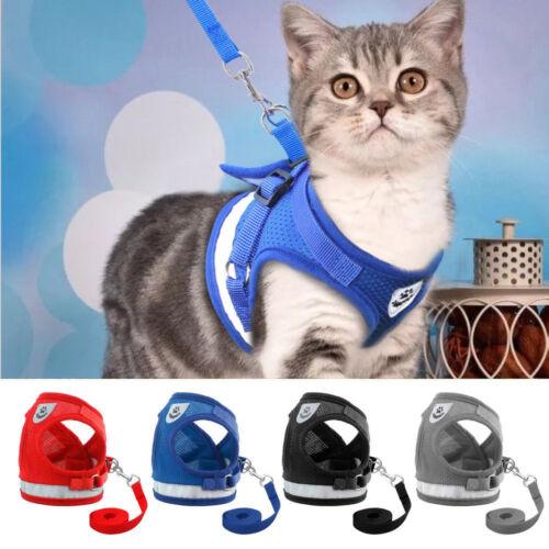 Katzengeschirr Mit Leine Kitten Ausbruchsicher Gepolstert Soft Verstellbar S-XL