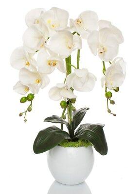 Orchideen Gesteck künstlich Weiß Keramik Übertopf Kunstblumen Kunstpflanze     3