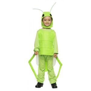 Grasshopper Costume Kids Halloween Fancy Dress