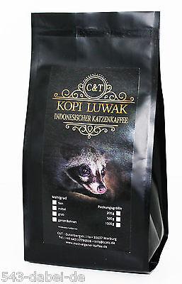 269 EUR/KG Kopi Luwak Katzenkaffee gemahlen / Filterkaffee 100g  gemahlen