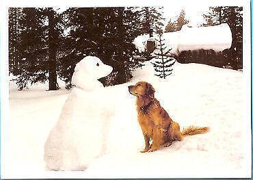 Golden Retriever Christmas Cards EBay