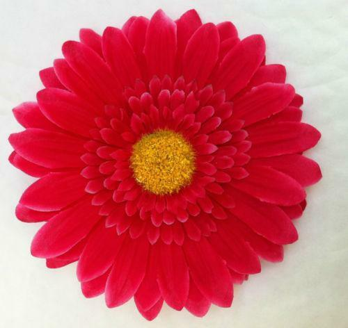 Gerbera Heads  Crafts   eBay