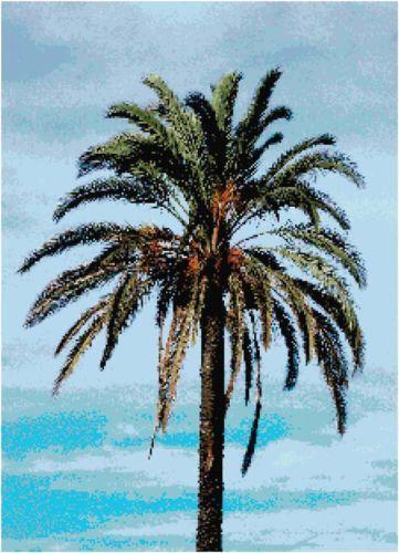 Palm Tree Cross Stitch EBay