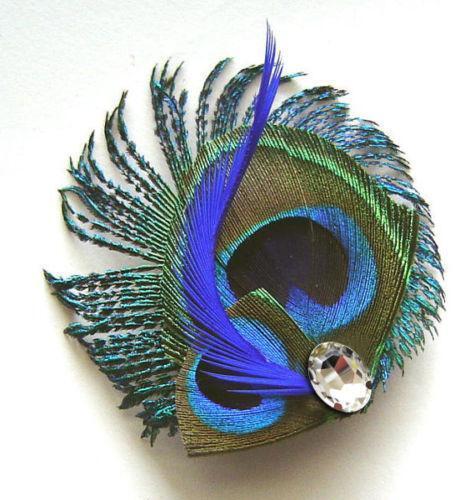 Peacock Fascinator EBay