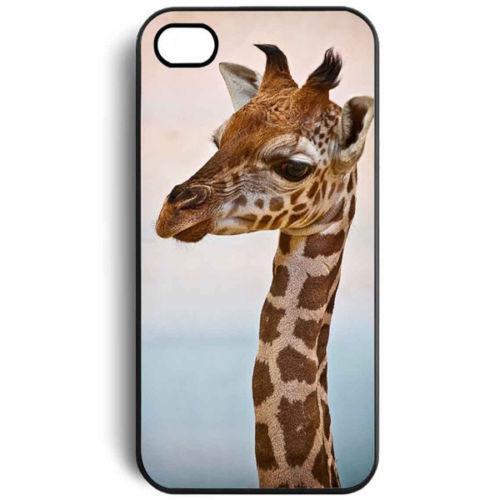 Giraffe IPhone 4 Case EBay