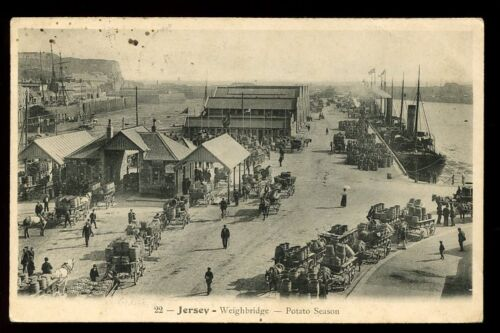 Channel-Islands-JERSEY-Weighbridge-Potato-Season-PPC-1908-harbour-scene