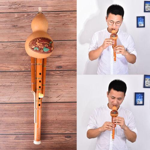 Profeesional Chinese Hulusi Kürbis Cucurbit Flöte c Schlüssel ethnisches InUUDE