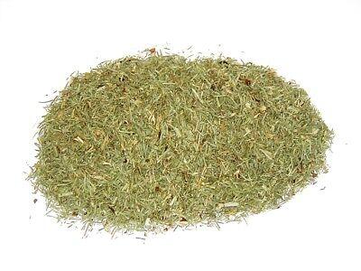 Schachtelhalmkraut Zinnkraut Tee 1 kg Vorratspack g1 Tee-Meyer