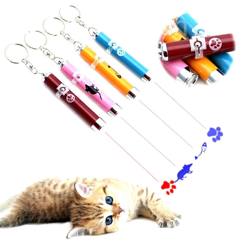 LED Pointer Maus Fisch Pfote - kein Laserpointer Katzenspielzeug Katzen